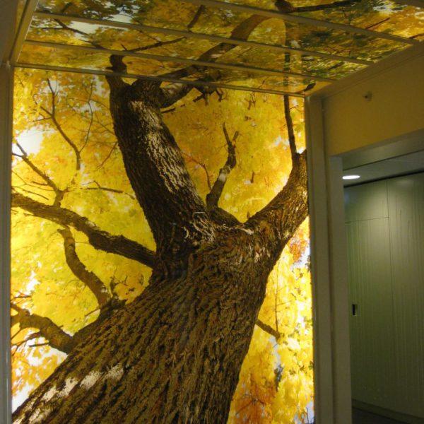 Printglas Tree